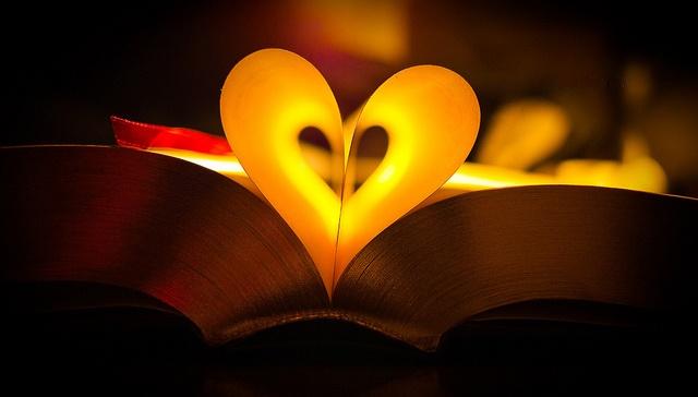 Romanzi da leggere un febbraio tutto da leggere for Bei romanzi da leggere